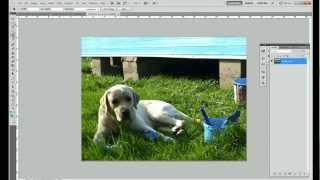 Как напечатать маленькие фотографии?(Из этого видео вы узнаете, как подготовить свои фотографии, чтобы напечатать их в маленьком размере для..., 2012-05-16T08:19:32.000Z)