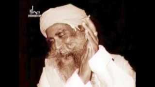 YOU ARE MY PERFECT MIRROR ISHA (Gratitude towards our Sadhguru Jaggi Vasudev )