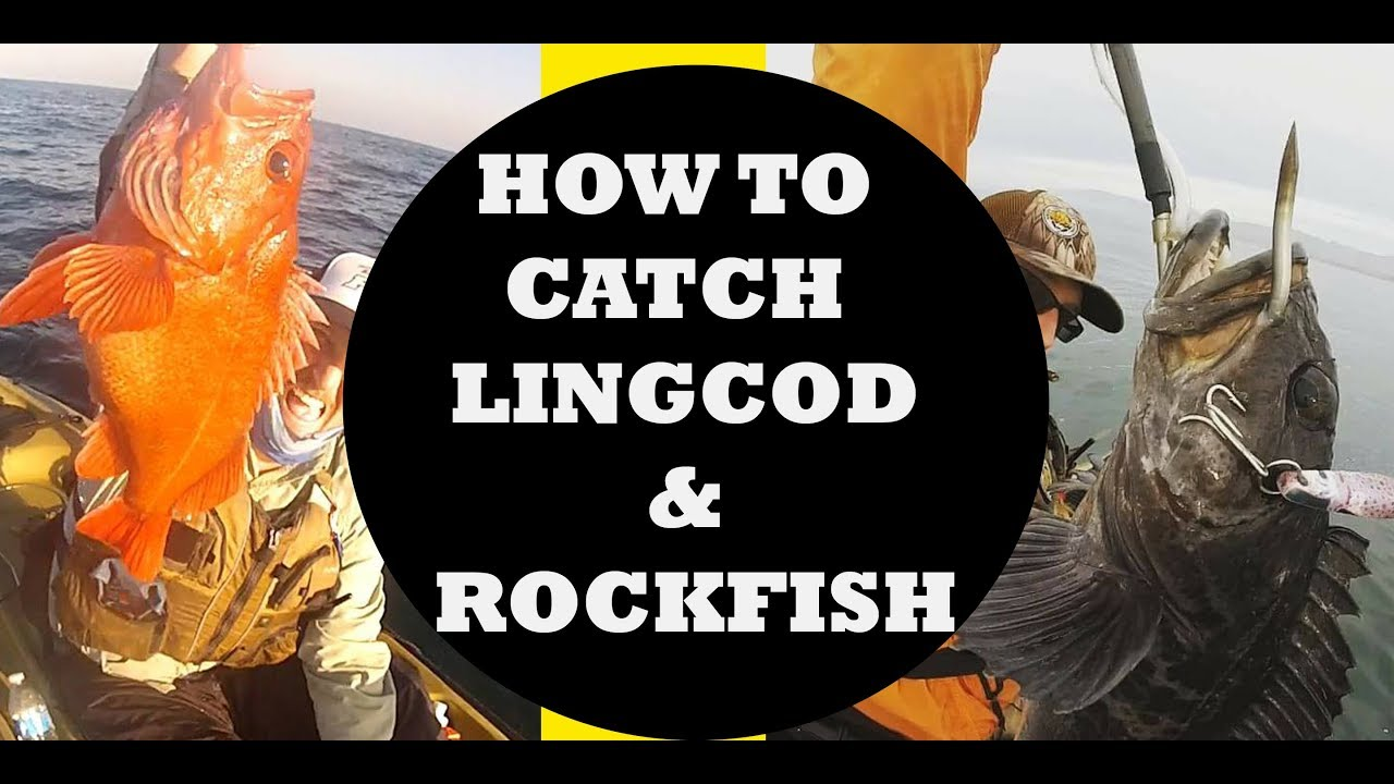 How to Catch Rockfish and Lingcod