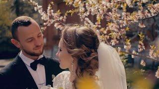 видео свадьба Харьков