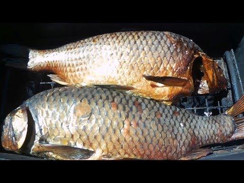 Быстрый способ замариновать рыбу для горячего копчения.#МоиРецепты #Сазан#Карп