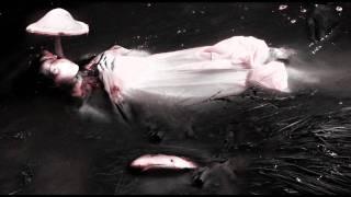 Hans Bouffmyhre - Demon Within (Pfirter Remix)