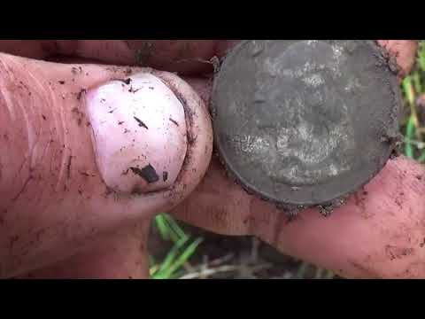 Quest 4 Treasure # 89 old site, modern coins   ( Metal Detecting )By: Quest For Details