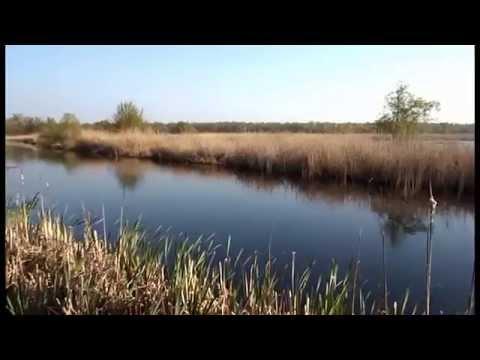 херсон рыбалка на ингульце
