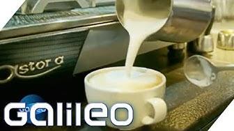 Cooler Kaffee: Diese Beiden starteten ein Kaffee-Imperium | Galileo | ProSieben