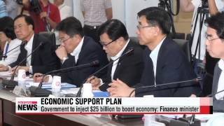 Government to inject $25 billion to boost economy: Finance minister