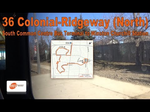 36 Colonial-Ridgeway - MiWay 2008 New Flyer D40LFR 0819 (South Common to Winston Churchill Stn)