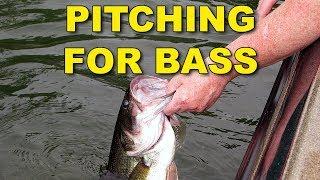 Pitching For Bass   Bass Fishing