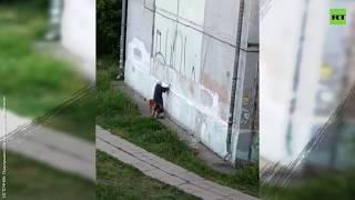 Пенсионерка закрасила граффити на пятиэтажке, не дождавшись коммунальных служб
