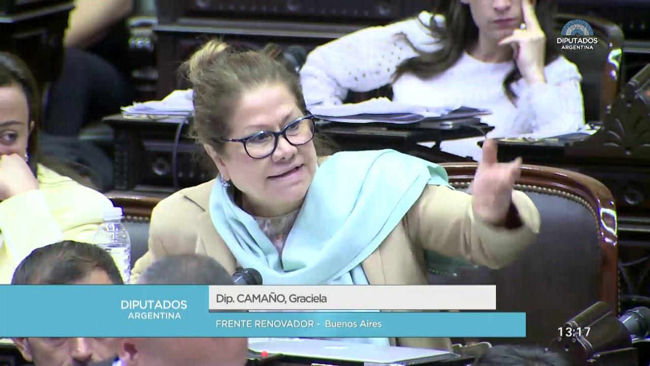 Diputada Camaño Graciela - Sesión 04-04-2019 - CP