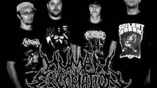 Human Excoriation - Incestuous Existence