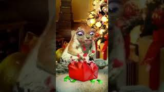 мешочек с деньгами под елочку (поздравление с новым годом)
