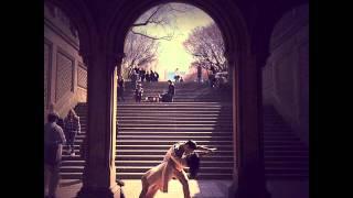 Last Tango In Paris - Michael Paulo