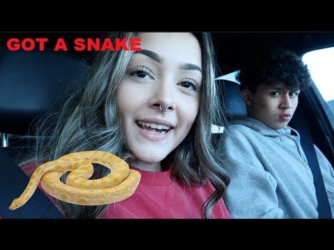 Shopping Spree at Target and Buying a New Snake! | Real.Ona