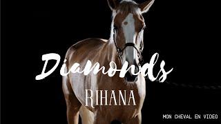 Diamonds - vidéo de cheval