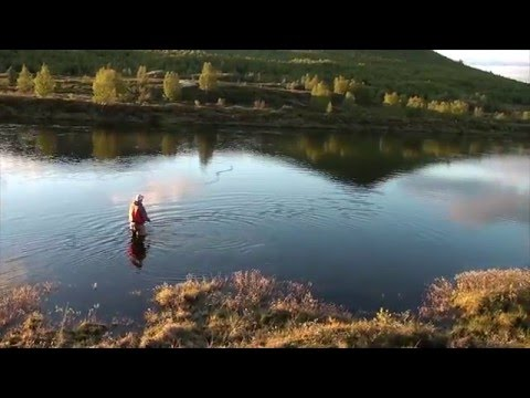 Norwegian Flyfishing movie 2012 - Secretriver productions (full movie)