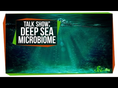 Deep Sea Microbiome: SciShow Talk Show