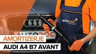 Vgradnja Blažilnik AUDI A4 Avant (8ED, B7): brezplačen video