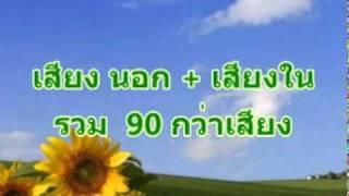 เสียงเรียกนกนางแอ่น thaiswiftletsounds.com 100 บาท