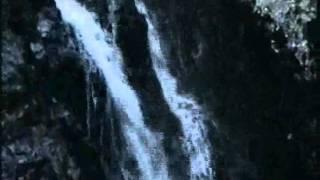 Fake Wings (U.S.A.-Japan Collab.) 尺八Shakuhachi & Guitar
