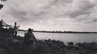 Ловля тарани на реке Днепр Рыбалка на реке Ловля плотвы с берега Подлещик и плотва на фидер Фидер