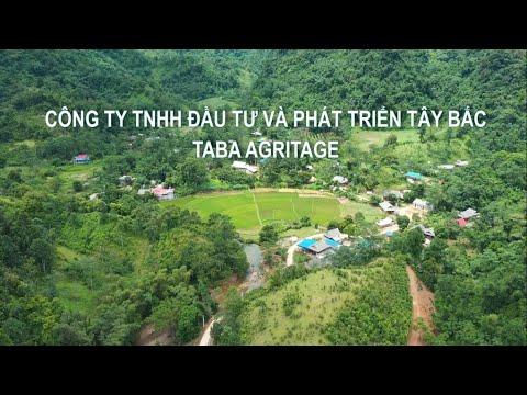 Giới thiệu Công ty TNHH đầu tư và phát triển Tây Bắc - TABA AGRITAGE