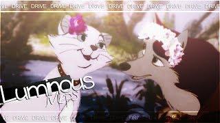 ✨ drive | animash crossover mep .