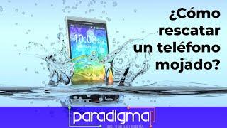 Tutorial: ¿Cómo rescatar un teléfono mojado?