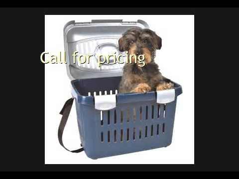 Pet Shipping To Cape Verde