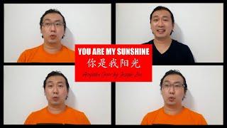 You Are My Sunshine 你是我阳光 ( Joseph Zen Acapella Cover)