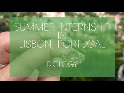 Summer Internship in Lisbon, Portugal