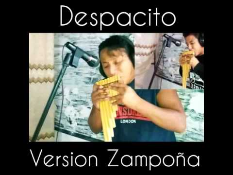 #Despacito Version Zampona