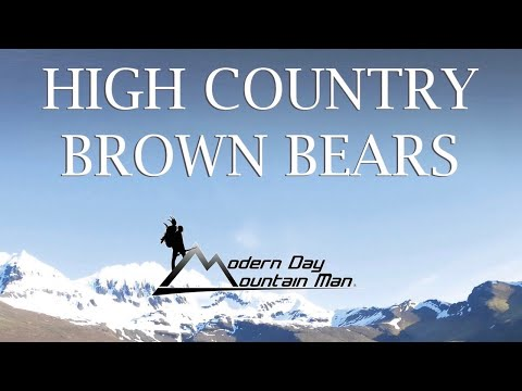 High Country Brown Bears, Alaska Brown Bear Hunting