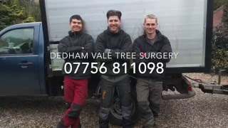 A Day In The Life Of: Dedham Vale Tree Surgery (Introduction, Promo)