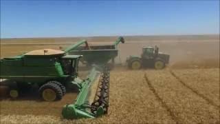 Kepler Farms Wheat Harvest 2016 - DJI Phantom 3