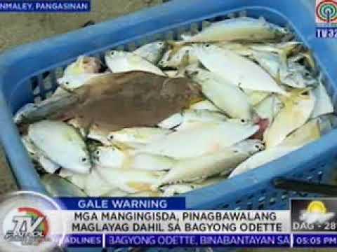 TV Patrol North Central Luzon - Oct 12, 2017