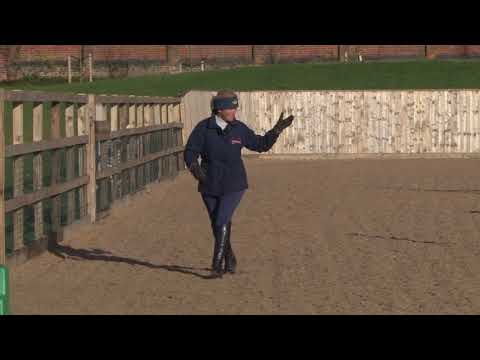 British Showjumping Training - Retraining of Racehorses Part 4