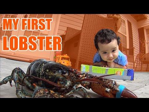 Zee Tries Canadian Lobster