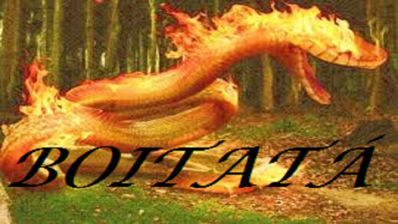 Populares A Lenda do BOITATÁ a Cobra de Fogo -- História do Folclore  OI81