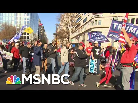 Thousands of Trump Supporters March In Protest Of Election Results | MSNBC