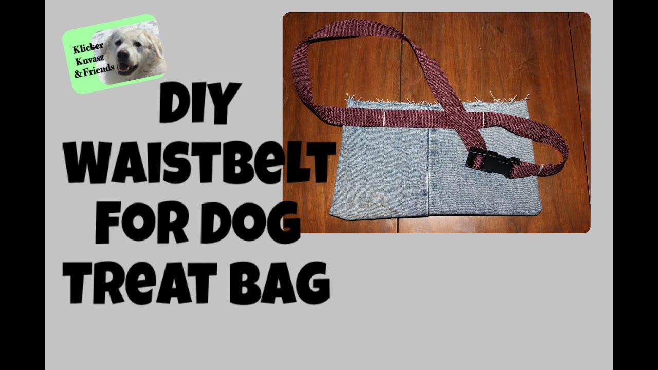 Dog Training Treat Belt