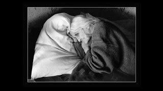 1.3 Фотография, литература и живопись. Что такое фотография // А.И.Лапин: Лекции о фотографии.