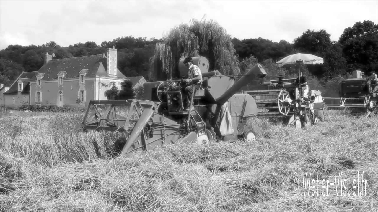 Agriculture à l'ancienne