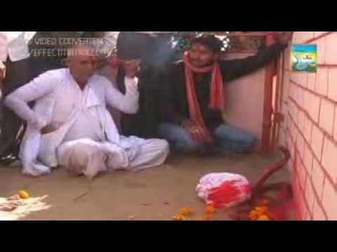 Unava Goga Maharaj Mandir Darshan Goga Maharaj