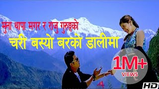 Chari basyo barko dalima by Raju Gurung and Muna Thapa Magar
