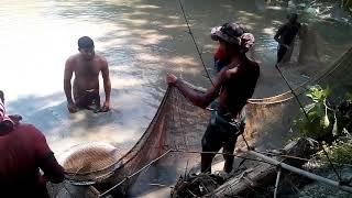 Net Fishing // Amazing  Catch Fish // Amazing Net Fishinginpond