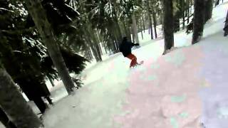 Wildkatz - tree skiing Thumbnail