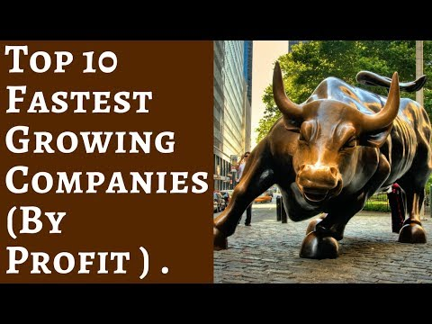 Top 10 Fastest growing Companies ( By Profits ).