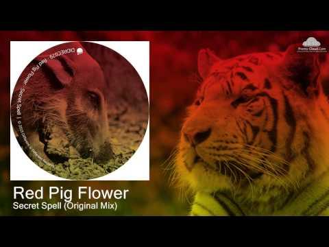 Red Pig Flower - Secret Spell (Original Mix) [Techno]
