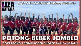 Gambar cover Potong Bebek Jomblo | Liza Natalia | Senam & Joged Choreo | Dangdut Cover Song